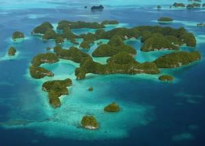 経験者が語る!パラオ体験旅行記 〜Palauの魅力を簡単にご紹介〜