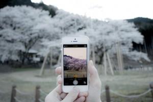 自分でも撮れる!春の美しい風景や景色の写真集。オススメ撮影機材も