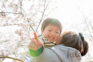 春の花の代名詞 桜の花びらと少年(ピンク・子ども)cherryblossoms_spring_photo_03