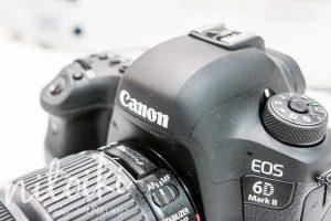 EOS 6D Mark II(6DMk2、6D2)の新旧を比較!買って後悔しない一眼レフカメラはこれ!評価・評判・レビュー付き!