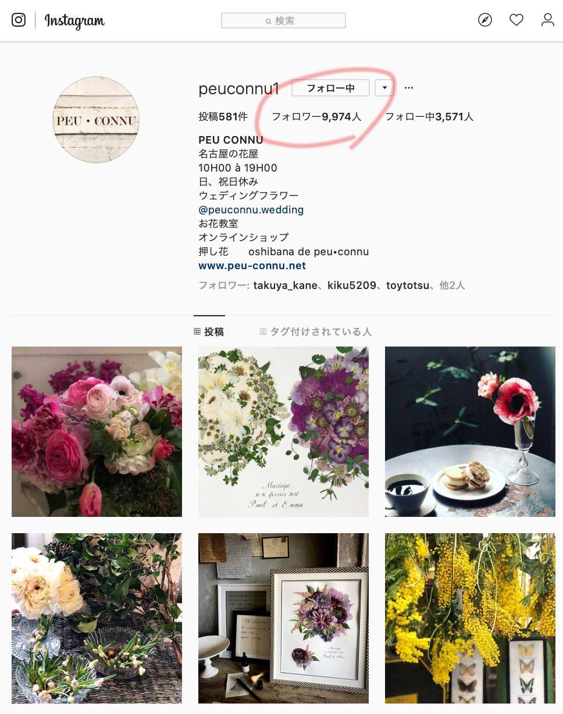 もうすぐ1万人突破!名古屋大須のお花屋 プー・コニュ(PEU・CONNU)さんのInstagramフォロワーが増加中! peuconnu_instagram